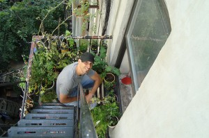Mike Lieberman, Founder of Urban Organic Gardener