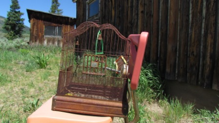 ghost-town-north-of-kremmling-colorado-south-of-hwy-14-junction-rusty-bird-cage