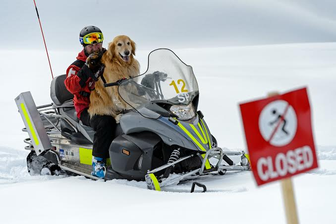 Henry gets a lift from Vail Ski Patrol, Photo Courtesy of Vail Resorts
