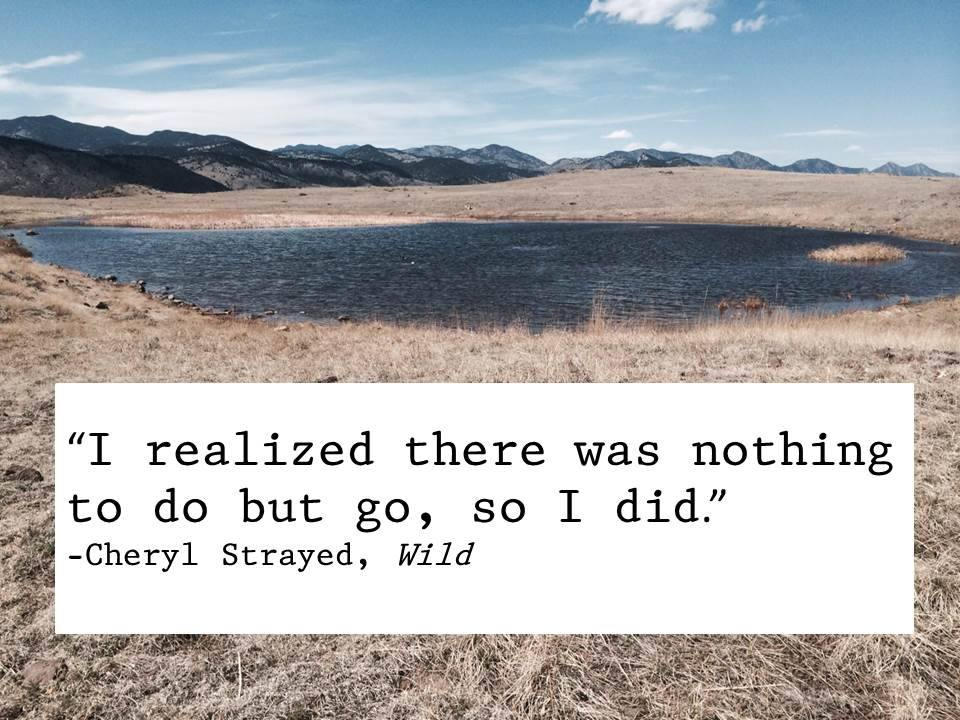 i realized there was nothing to do but go so i did cheryl strayed quotes wild